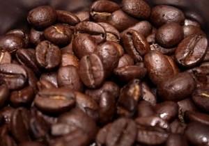 Café: entre 49,13 e 51,94 milhões de sacas de 60 quilos