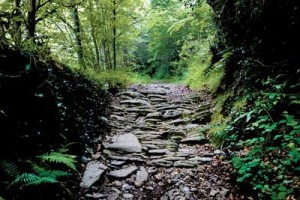 As pedras do Caminho Primitivo: atravessando a Cordilheira Cantábrica